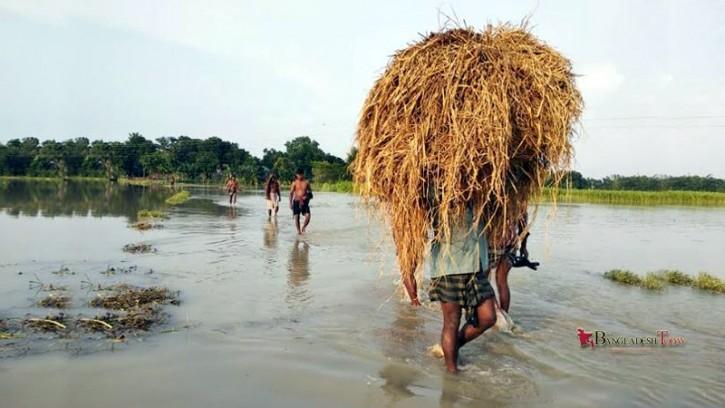 রাজবাড়ীতে বিপৎসীমার ৭০ সে.মি. ওপর দিয়ে প্রবাহিত হচ্ছে পদ্মার পানি